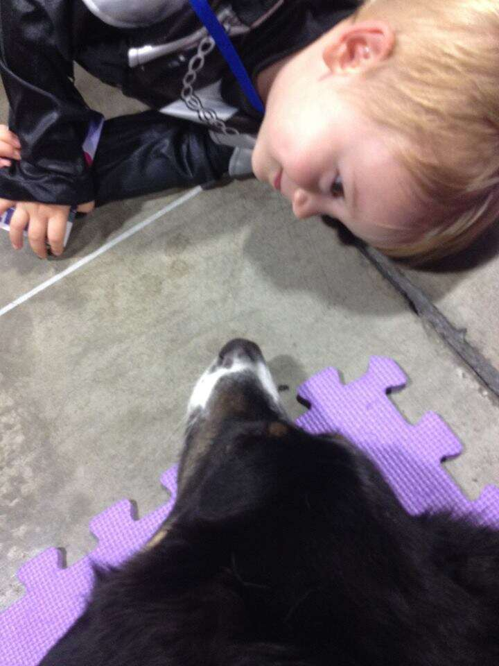 Dog lying down with child