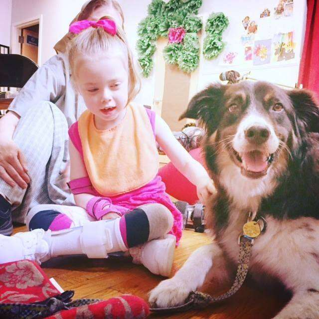 Dog comforting little girl