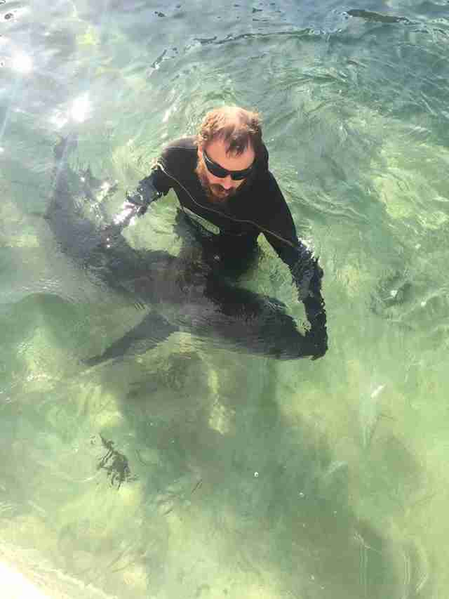 Man with shark in ocean pool
