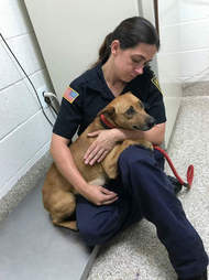 Officer holding rescued dog
