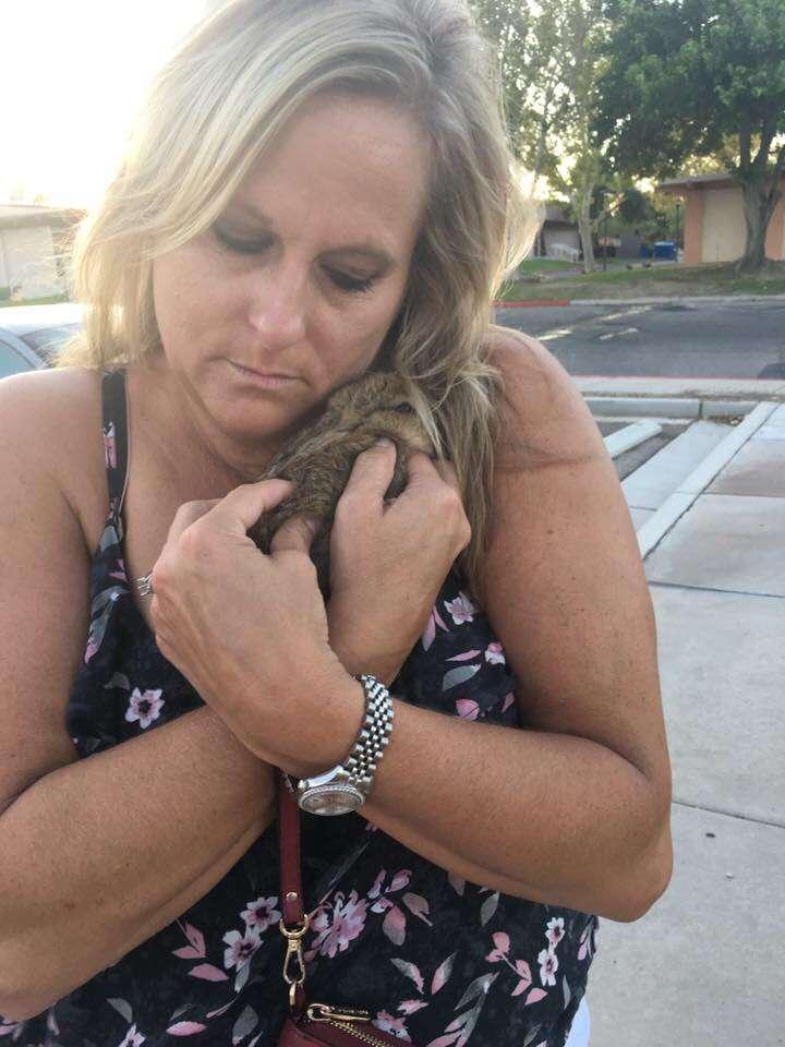 Woman hugging rescue rabbit