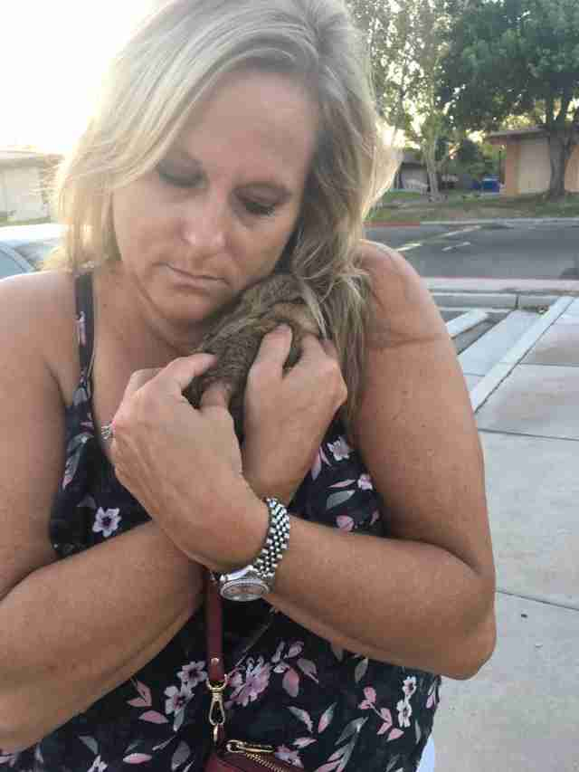 Woman hugging rescue rabbit