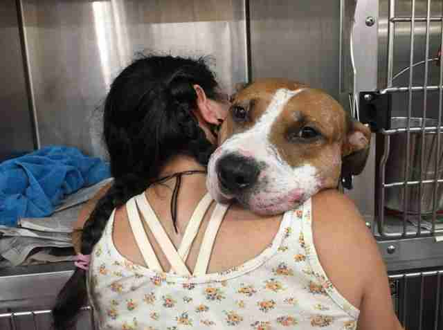 dog rescued gets a hug