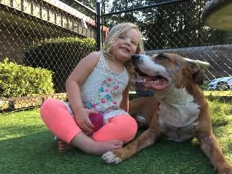 dog rescued gets a hug