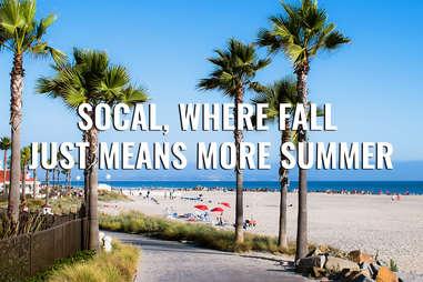 San Diego beach with palm trees