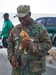 Soldier holding tiny kitten