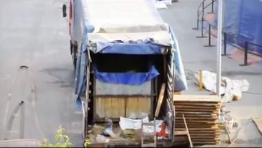 Transport truck carrying captive belugas