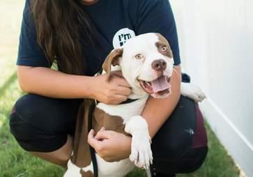 Woman cuddling shelter dog