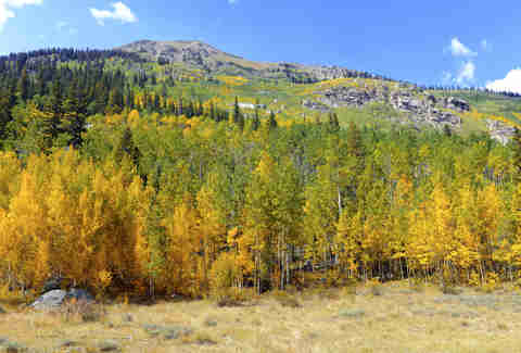 aspen rocky mountains