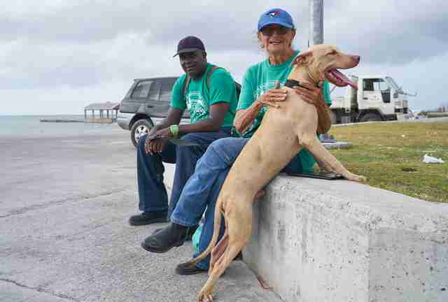 People with rescued dog at port