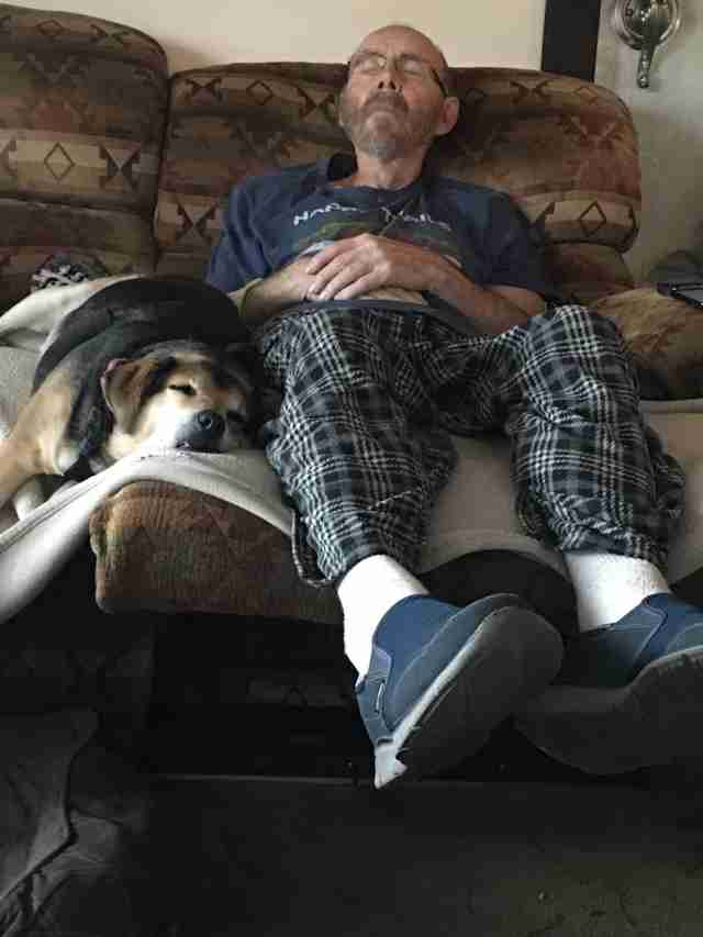 dog napping with his dad