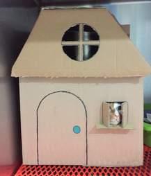 Cat in fancy cardboard house