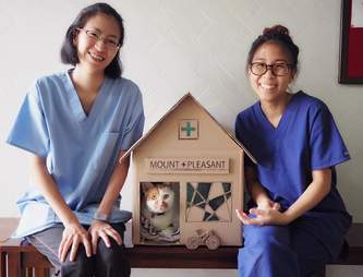 Vet techs with cardboard house for cats