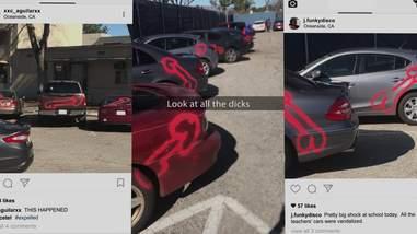 american vandal dicks