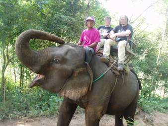 elephant ride tourist industry