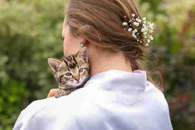 Bride holding kitten