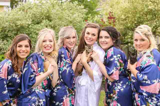Bride and bridesmaids with kittens