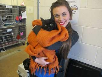 Woman holding cat at shelter