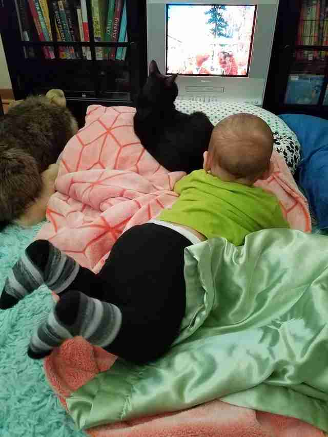 cat and baby growing up together