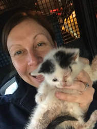 kitten trapped in abandoned house