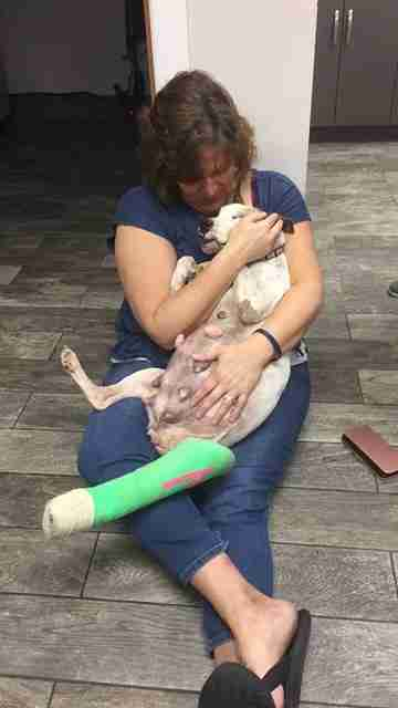 Woman holding injured dog