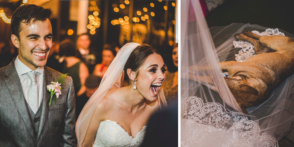 Couple Has The Best Reaction After Stray Dog Crashes Their Wedding