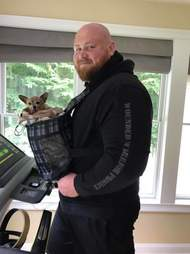 chihuahua on treadmill with man