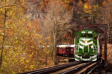 a train coming along a track through the trees