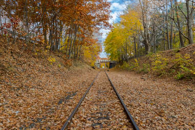 a railroad chugging allong a forest trail