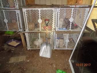 Crates containing crates