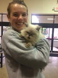 Woman holding rescued Persian cat