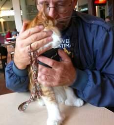 Man cuddling cat on table