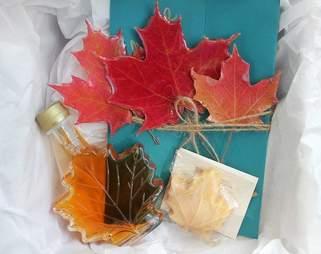 buy fall foliage
