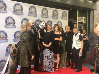 dog and cast on red carpet