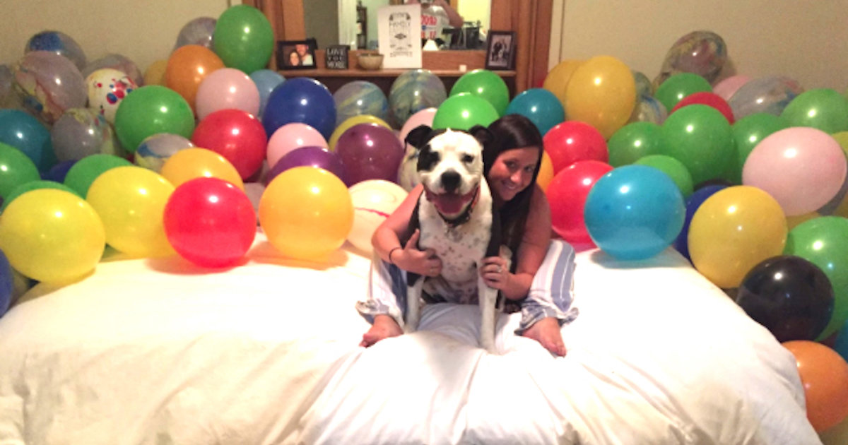 Pit Bull's Mom Gets Him Room Of Favorite Things For His Birthday