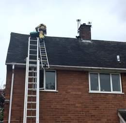 cat stuck on roof