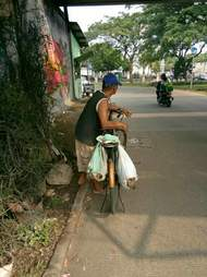 Dogs tied up in bag over bike