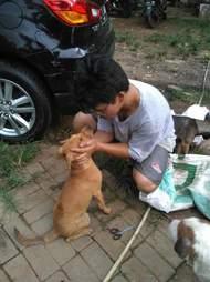 Man comforting freed dog