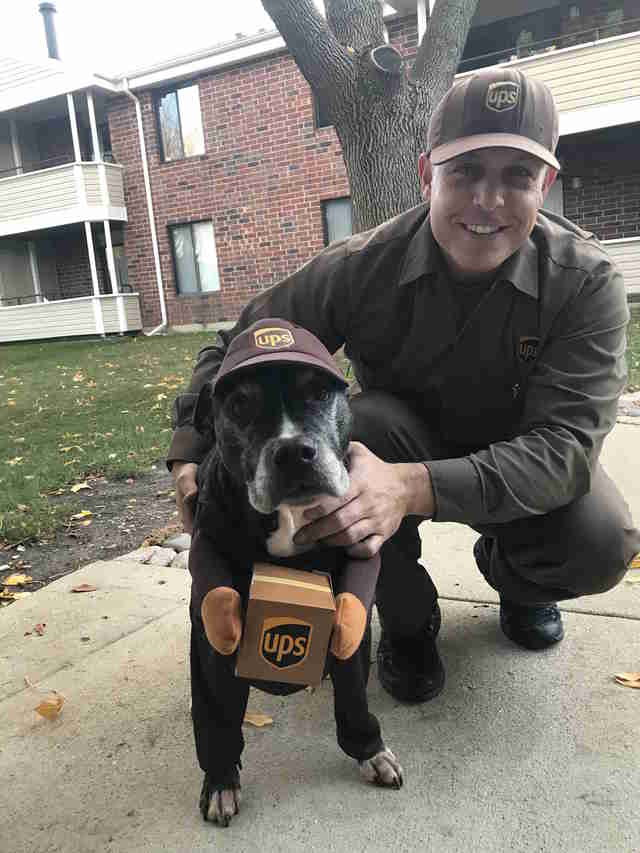 dog loves ups guy