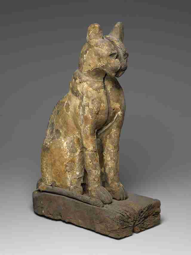 Cat coffin with mummy from ancient Egypt