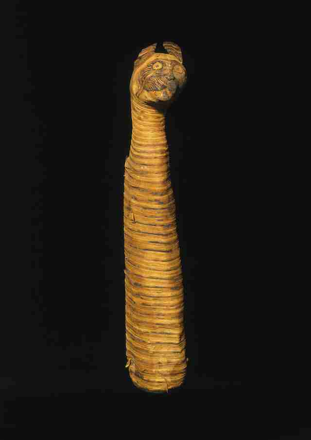 Cat mummy from ancient Egypt