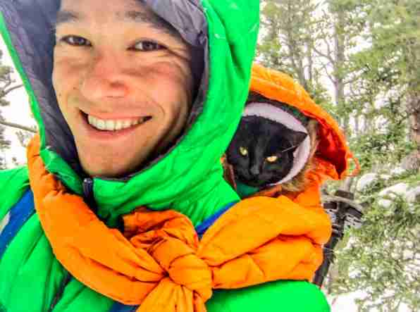 Cat curled up in hood of hiker