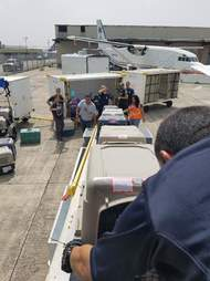 Dog kennels being loaded onto a plane