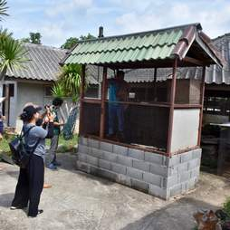 Shed where pet macaque lived before rescue