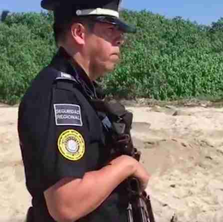 Guard in Mexico watches over endangered sea turtles