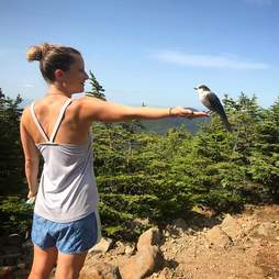 Appalachian Trail hiker with gray jay perched on hand