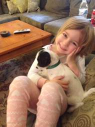 little girl plays with dog