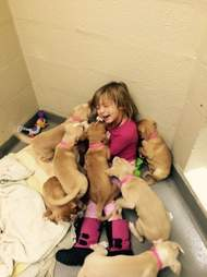 little girl volunteers at a shelter and plays with puppies