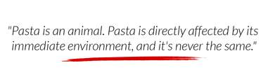 pasta is an animal
