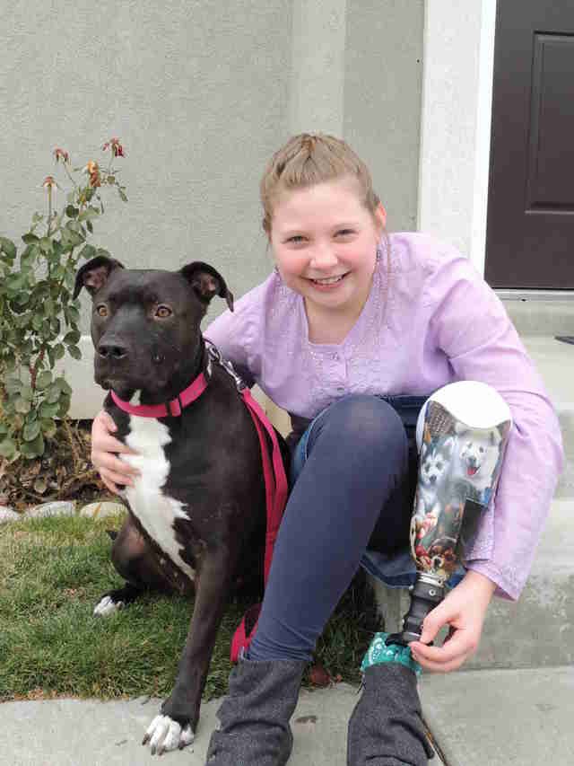 little girl who lost a leg gets a three-legged dog